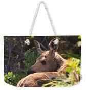 Moose Baby 5 Weekender Tote Bag
