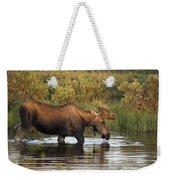 Moose Drinking In A Pond, Tombstone Weekender Tote Bag