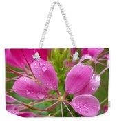 Morning Dew On Pink Cleome Weekender Tote Bag