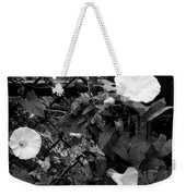 Morning Glorys On A Fence Weekender Tote Bag