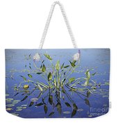 Morning Reflection Weekender Tote Bag