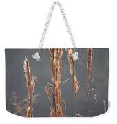 Morning Sunshine On Tall Reeds Weekender Tote Bag