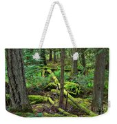 Moss And Fallen Trees In The Rainforest Of The Pacific Northwest Weekender Tote Bag