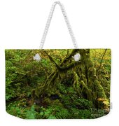 Moss In The Rainforest Weekender Tote Bag