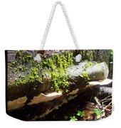 Mossy Waterfall On Mushroom Rock Weekender Tote Bag