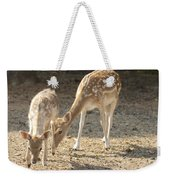Mother And Child V2 Weekender Tote Bag