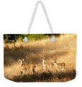 Mother And Twins Weekender Tote Bag