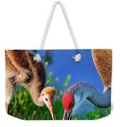 Mother And Young Sandhill Crane Weekender Tote Bag