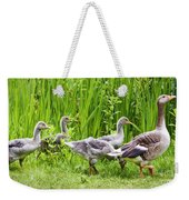 Mother Goose Leading Goslings Weekender Tote Bag by Simon Bratt Photography LRPS