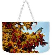 Mountain Bluebird Sialia Currucoides Weekender Tote Bag