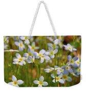 Mountain Flowers 5534 Weekender Tote Bag