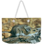 Mouse On A Log Weekender Tote Bag