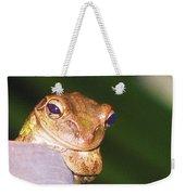 Mr. Toad Weekender Tote Bag