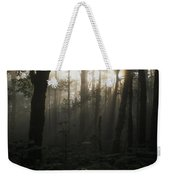 Mt. Hood National Forest Near Larch Weekender Tote Bag