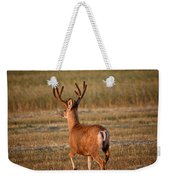 Mule Deer Buck In An Alberta Field Weekender Tote Bag