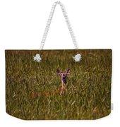 Mule Deer In Wheat Field, Saskatchewan Weekender Tote Bag