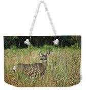 Mule Deer Winthrop Wa 9176 Weekender Tote Bag