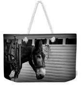 Mule - Tied Up For A While Weekender Tote Bag