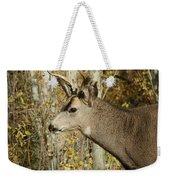 Mulie Buck 3 Weekender Tote Bag