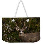 Mulie Buck Weekender Tote Bag