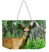 Munch Time Weekender Tote Bag