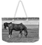 Munching Sweet Spring Grass II Weekender Tote Bag