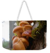 Mushrooms And Lichen Weekender Tote Bag