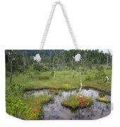 Muskeg Bog With Ponds, Mitkof Island Weekender Tote Bag