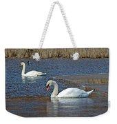 Mute Swans On A Cape Cod Pond - Cygnus Olor - Quissett  Massachusetts Weekender Tote Bag