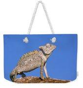 Namaqua Chameleon Chamaeleo Namaquensis Weekender Tote Bag