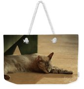 Naping In The Shade Weekender Tote Bag