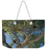 Naples Tree Weekender Tote Bag