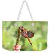 Nature Square - Saddleback Dragonfly Weekender Tote Bag