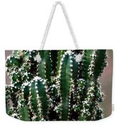 Nature's Cactus Abstract 2 Weekender Tote Bag