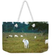 Nelore Beef Cattle Weekender Tote Bag