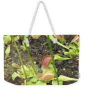 Nepenthes Weekender Tote Bag