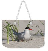 Nesting Common Tern Weekender Tote Bag