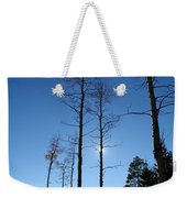 New Mexico Series - Bare Tree Sky  Weekender Tote Bag