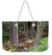 New Mexico Series - Near The River Weekender Tote Bag