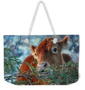 New Years Morning Cow Weekender Tote Bag