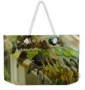 Newborn At The Butterfly Factory  Weekender Tote Bag