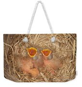 Newborn Robin Nestlings Weekender Tote Bag