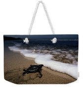 Newly Hatched Leatherback Turtle Weekender Tote Bag