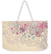Normal Stellate Cells Weekender Tote Bag by Science Source