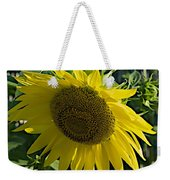 Normal Sun Weekender Tote Bag
