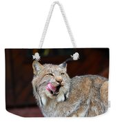 North American Lynx Weekender Tote Bag