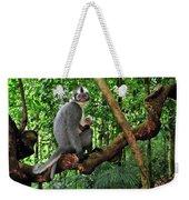 North Sumatran Leaf Monkey Presbytis Weekender Tote Bag