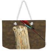 Northern Carmine Bee-eater Weekender Tote Bag by Tony Beck