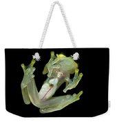 Northern Glassfrog Hyalinobatrachium Weekender Tote Bag