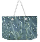 Nostoc Algae Weekender Tote Bag by M. I. Walker